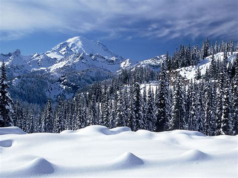 Snow Valley hd Wallpaper | High Quality Wallpapers