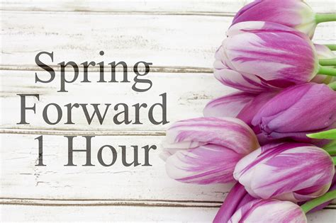 Spring ahead: daylight saving March 8, 2020 - Greater