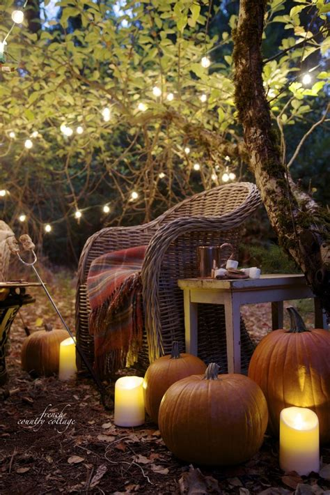 An autumn evening in the orchard   Fall decor, Autumn cozy
