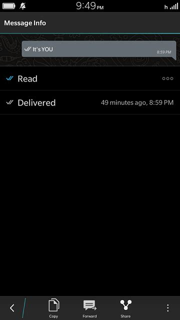 What's with the Blue Checkmark in WhatsApp? - BlackBerry