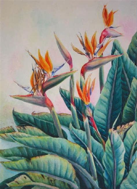 Botanical Plein Air Watercolor Painting Bird of Paradise by