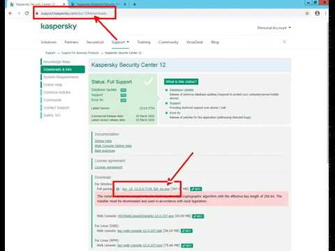 Update - Kaspersky Endpoint Security 11 for Windows - have